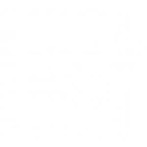 RSA-911 Edit Checker Icon