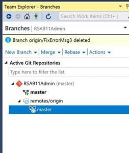 visual studio manually delete branch